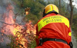 forestale_incendio